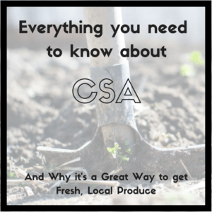 Everything you need to know about Community Supported Agriculture