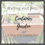 How to start your own container garden.  A Q&A with Organic Bob