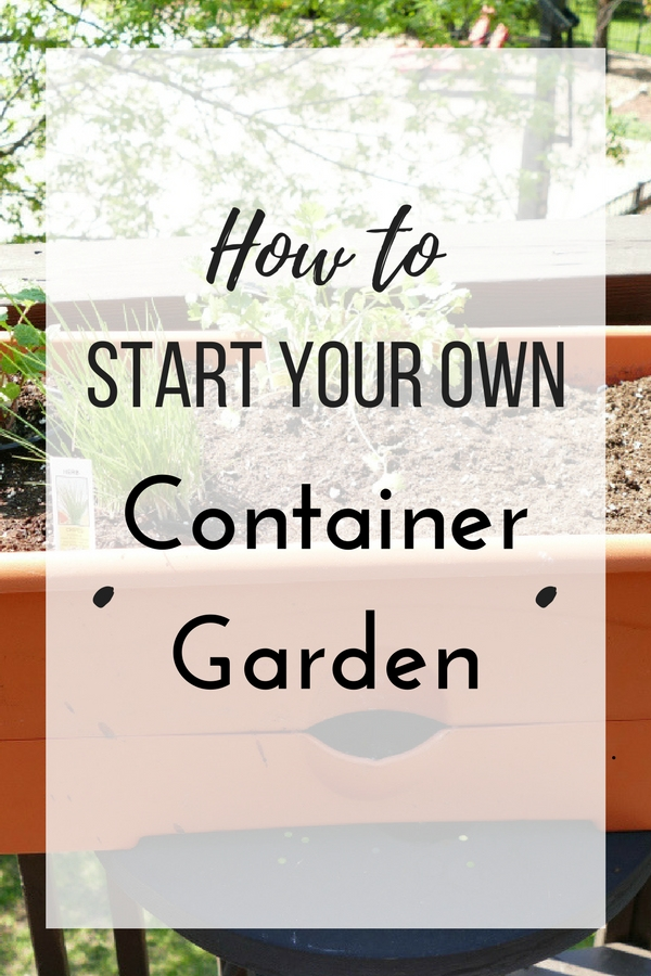 How to start your own Container Garden